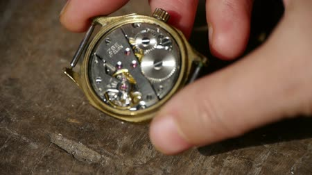 bilek : Holding internal structure of Watch on desk,bearings,gears,hand.