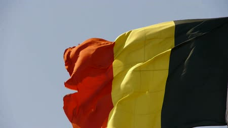 dialect : Belgian flag is fluttering in wind.