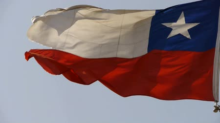 mosqueado : Chile flag is fluttering in wind.