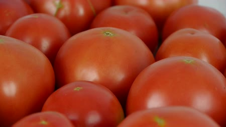 tomates : Un ensemble de fruits de tomates fraîches.