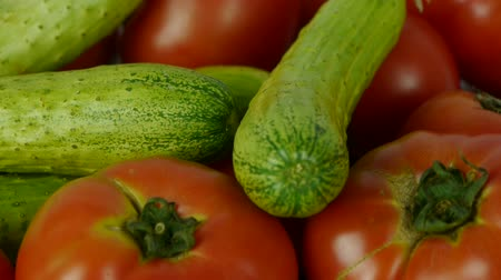 rakás : A set of fresh tomato & cucumber fruit vegetables.