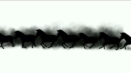 siluety : a group of horses silhouette running & dust.