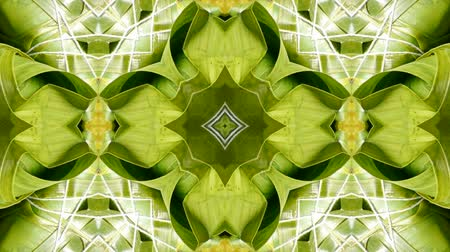 pyramidal : kaleidoscope pattern of rice dumplings of glutinous rice,dumplings leaf.