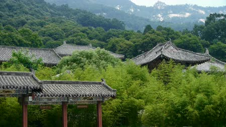 bambusz : China ancient architecture in bamboo forest. Stock mozgókép