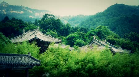 jiangsu : China ancient architecture in bamboo forest. Stock Footage
