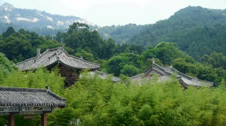 gates : China ancient architecture temple in bamboo forest.