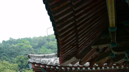 saçak : looking up roof eaves,China ancient architecture in bamboo forest,carved beams & painted buildings.