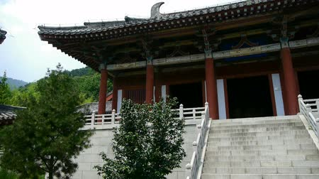 budist : China ancient temple architecture in forest. Stok Video