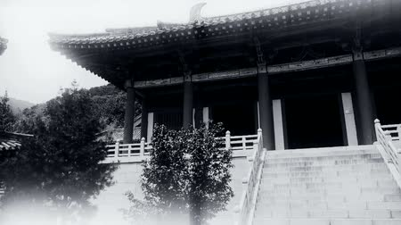 stare miasto : China ancient temple architecture in forest. Wideo