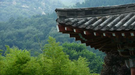 tradicional : China ancient temple architecture in forest,bamboo mountain hill.