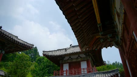 jiangsu : China ancient temple architecture in forest. Stock Footage