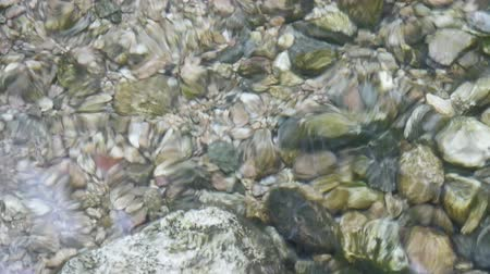 lomb : pebbles,fish & gravel under water,reflection on water,river stream on valley. Stock mozgókép
