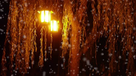 sokak lâmbası direği : willow tree & street lights at quiet night in winter snow.