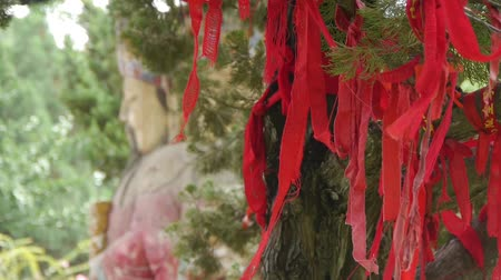 biloba : Red ribbon wrapped around branches.China Fortuna sculpture in temple.historical-sculpture & monuments.
