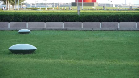docklands : Green grass lawn & Transportation in QingDao City.