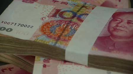 renminbi : large sums of money RMB.Financial Freedom.Mao Zedong leader Avatar.