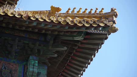 saçak : weeds grass & sculpture on roof eaves.China ancient architecture Beijing Forbidden City.Carved beams & painted buildings. Stok Video