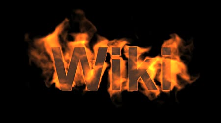 engulf : flame wiki word,fire text.