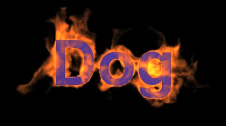 engulf : flame dog word,fire text.