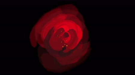 flor cabeça : 4k rose opening time lapse with smooth rotation.