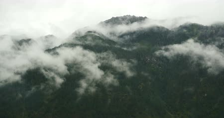 enevoado : time lapse of mountain mist rising in the morning,fog pine trees,such as wonderland.Bomi County in tibet,the largest precipitation area in China.