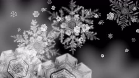 sniezynka :  Abstract Snowflake falling,cold winter snow background,romantic Christmas particles backdrop. Wideo