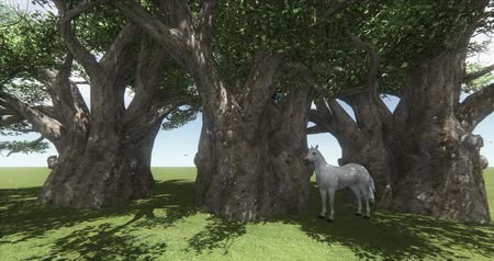 animalthemes : white horse  black horse under big tree,butterfly  bird flying,foal pet,farm animal wild life.