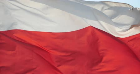 lengyelország : poland flag is fluttering in wind.