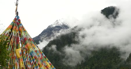 montar : prayer flag with snow mountain in tibet.