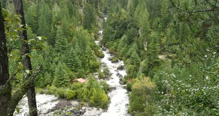 rejtekhely : Waterfall flowing in the valley,Green conifers,Bomi County,tibet.the largest precipitation area in China.
