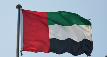 bulls balls : United Arab Emirates flag is fluttering in wind.