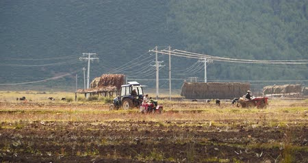 pasture land : tibetan people use farm tractor Arable land in shangrila yunnan,china.
