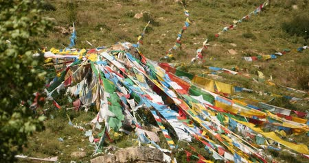 lucky charm : prayer flag on lhasa mountain,tibet.