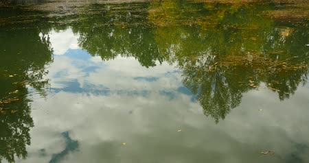 отражать : clouds and tree reflect on lake.Tibetan park,china.