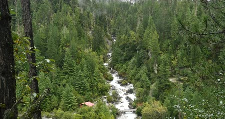 rejtekhely : 4k Waterfall flowing in the valley,Green conifers,Bomi County.the largest precipitation area in China.