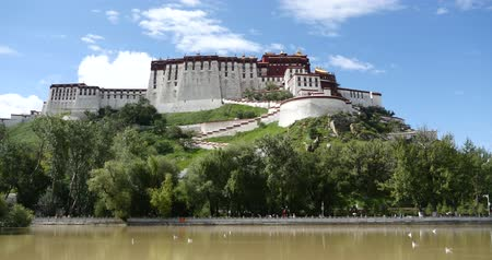 egemenlik : 4k Potala with willow in Lhasa,Tibet.white birds flying in sky or floating on lake surface.