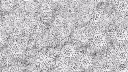 sobreposição : 4k Snowflake snow christmas flower design pattern background.