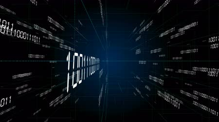 editor : 4k Digital binary code background,abstract scientific technology data binary code network conveying connectivity,complexity and data flood of digital age,Matrix of changing from zero to one digits. Stock Footage