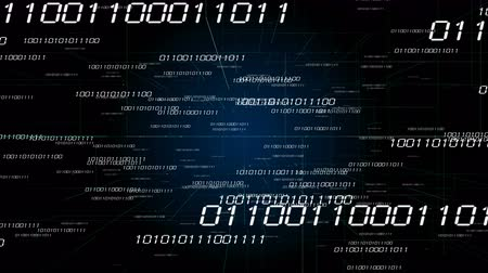 şifreleme : 4k Digital binary code background,abstract scientific technology data binary code network conveying connectivity,complexity and data flood of digital age,Matrix of changing from zero to one digits. Stok Video