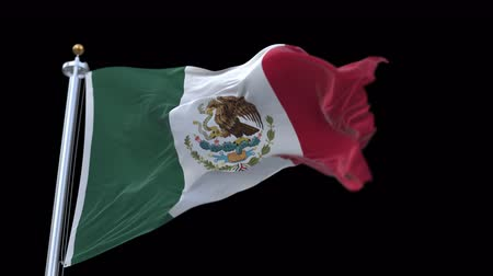 mexico city : mexico flag with flagpole waving in wind.