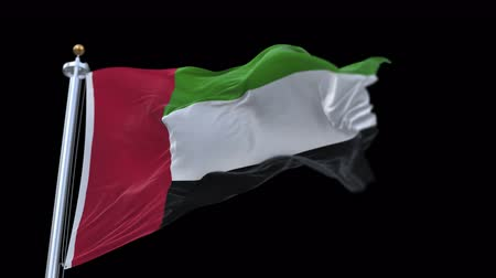 bulls balls : United Arab Emirates flag with flagpole waving in wind.