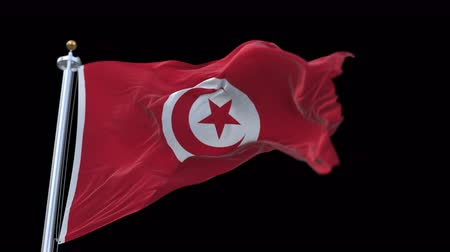monarchy : 4k seamless Tunisia flag with flagpole waving in wind.A fully digital rendering,The animation loops at 20 seconds.flag 3D animation with alpha channel included. Stock Footage