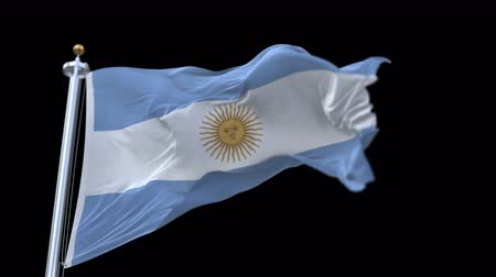weathered : 4k seamless Argentina flag with flagpole waving in wind.A fully digital rendering,The animation loops at 20 seconds.flag 3D animation with alpha channel included.