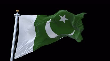 paquistão : 4k seamless pakistan flag with flagpole waving in wind.A fully digital rendering,The animation loops at 20 seconds.flag 3D animation with alpha channel included.