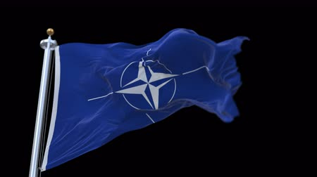 muhalefet : 4k seamless nato flag with flagpole waving in wind.A fully digital rendering,The animation loops at 20 seconds.flag 3D animation with alpha channel included. Stok Video