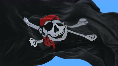 ensign : 4k seamless Close up of pirate flag slow waving with visible wrinkles.A fully digital rendering,The animation loops at 20 seconds.flag 3D animation with alpha channel included.