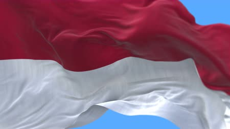 stožár : 4k seamless Close up of Indonesia flag slow waving with visible wrinkles.A fully digital rendering,The animation loops at 20 seconds.flag 3D animation with alpha channel included. Dostupné videozáznamy