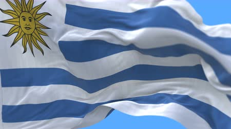 открытка : 4k Close up of Uruguay flag waving in wind.A fully digital rendering,The animation loops at 20 seconds.flag 3D animation with alpha channel included.