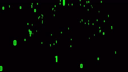 editor : 4k The Matrix style binary code,The camera moves through the falling numbers.abstract future tech background.Green version.data digital display. Stock Footage