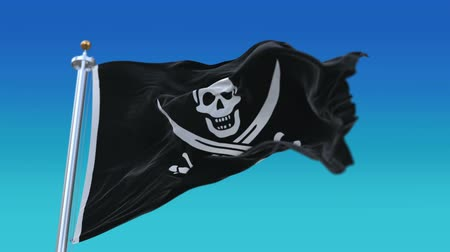 territorial : 4k looping pirate corsair buccaneer flag with flagpole waving in wind.A fully digital rendering,flag 3D animation. Stock Footage